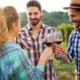Usuwanie plam z czerwonego wina